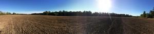 grassland landscape small