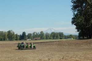 seed drill and mt hood smaller