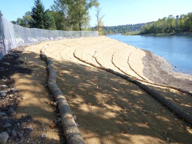 restored-bulkhead-area