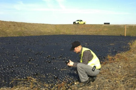 PDX Wildlife Team inspects Bird Balls in stormwater detention pond